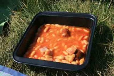 cocina solar cooker plato01